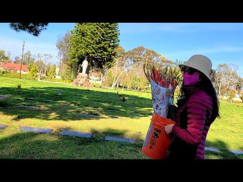 Đi thăm mộ ở Mỹ cuối năm || Jennifer Huynh vlog cuộc sống Mỹ
