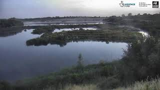 Preview of stream College Lake bird hide