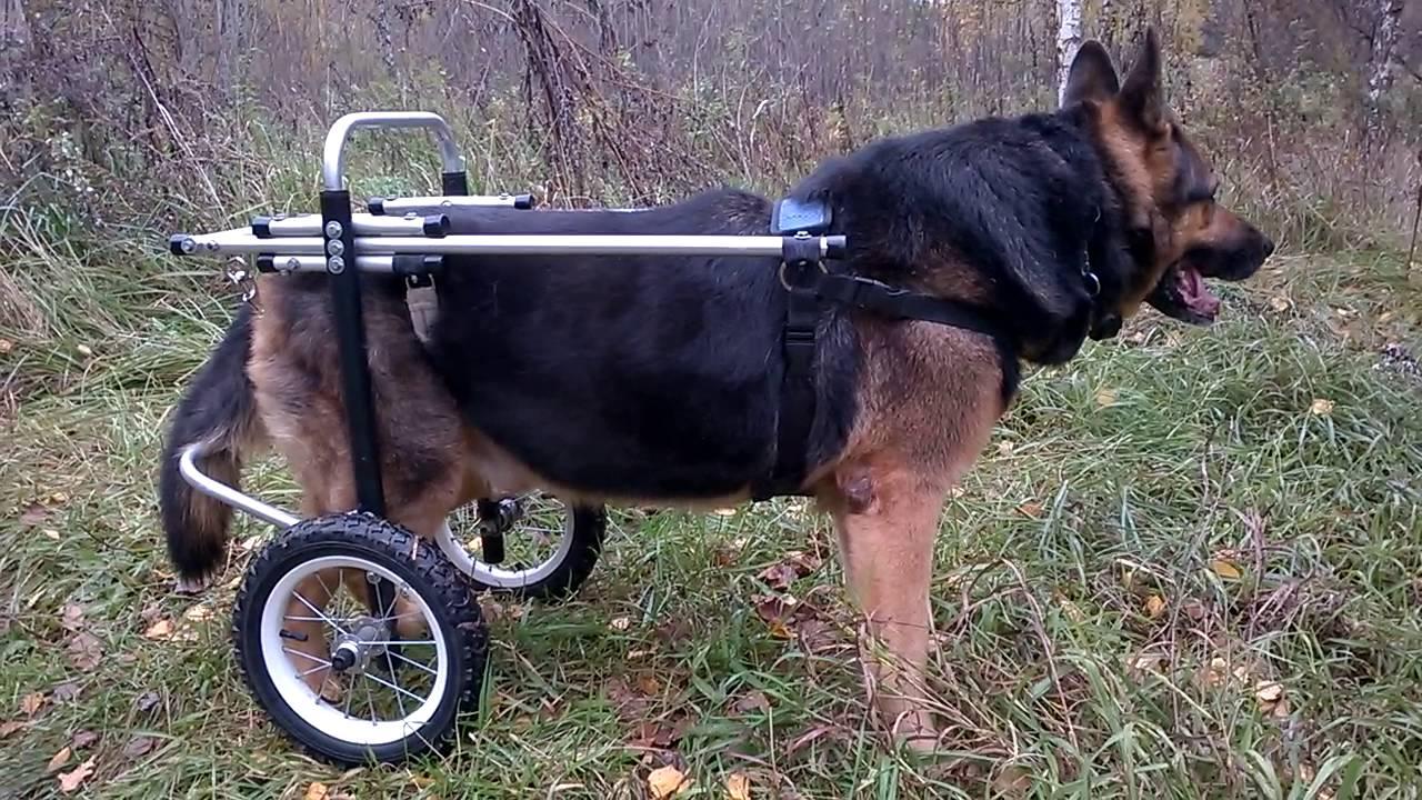 Инвалидная коляска своими руками чертежи