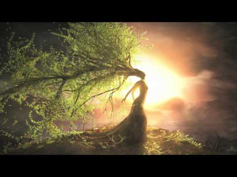 Fantasy Music For Writing | The Willow Tree (Original Compos