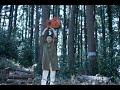 踊ってばかりの国『光の中に』 Music Video(2019)