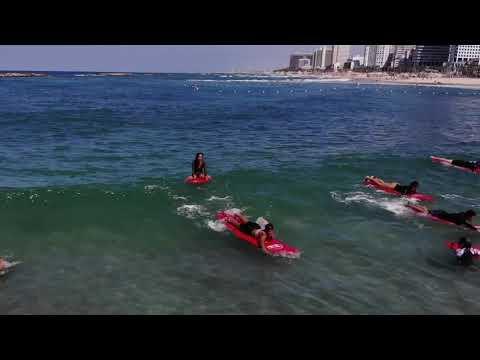Dolphinarium Beach Corona Waves