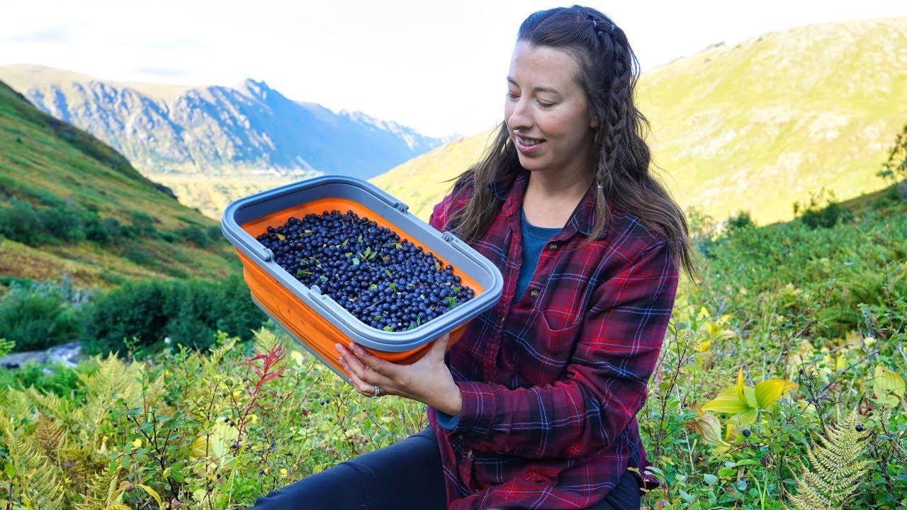 Seasons Are Changing | Honey & Berry Harvest | Wild Alaska