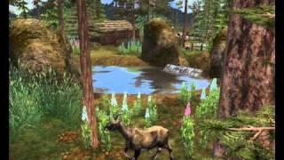Zeta Designs - Asmaro Forest Zoo part II