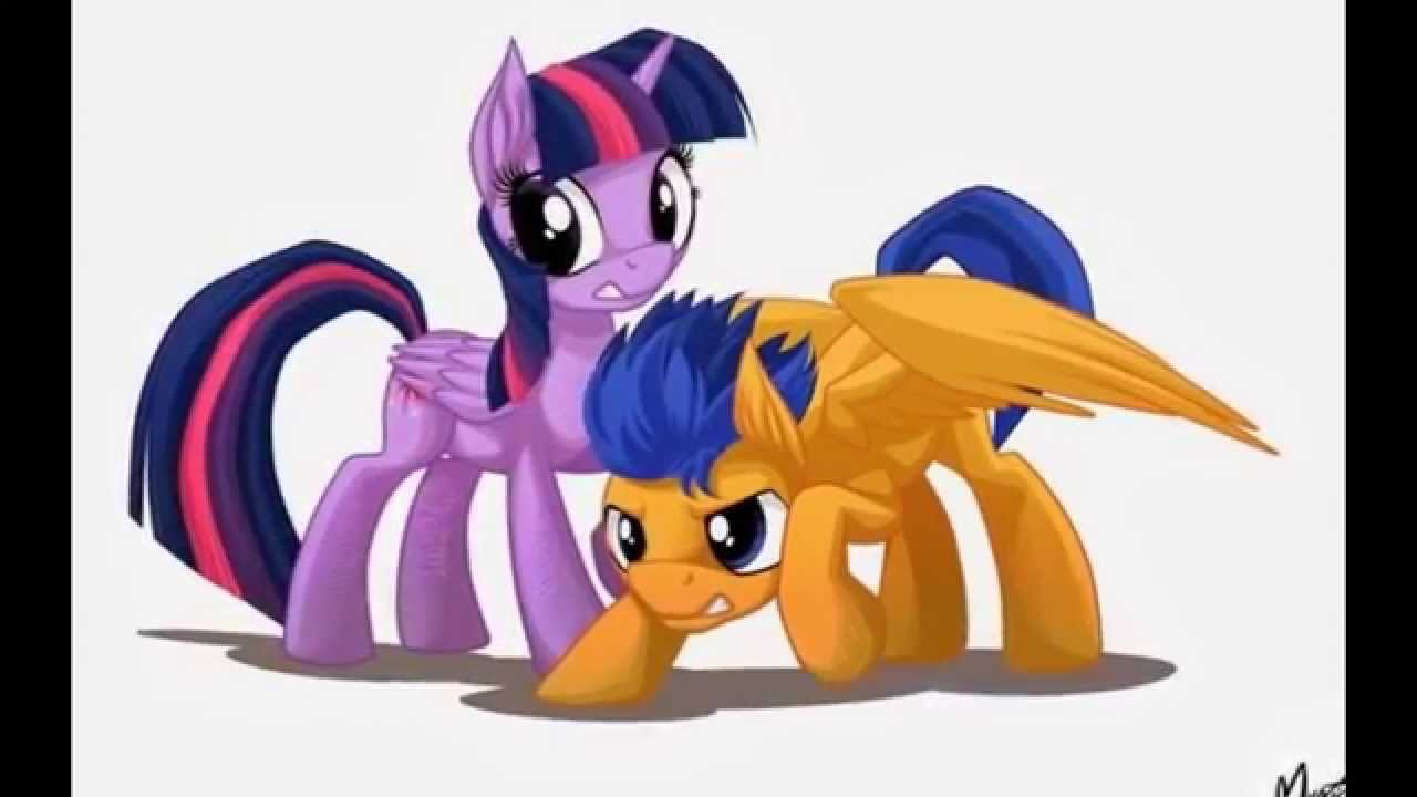 Mlp Flash Sentry And Twilight Sparkle Youtube
