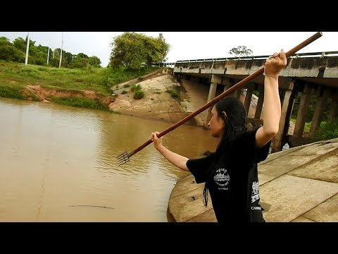 Thumbnail: Amazing Girl SpearFishing In The Siem Reap River -Khmer Fishing At Siem Reap Cambodia