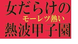 第一回女熱波甲子園の模様を突撃レポート! 熱風と熱気の大会です。 か...