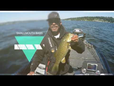 Just Fishing Lake Sammamish - Quick Shot, Drop Shot Technique