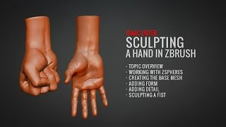 Zbrush El heykel (Tam BadKing de Öğretici.com.au)