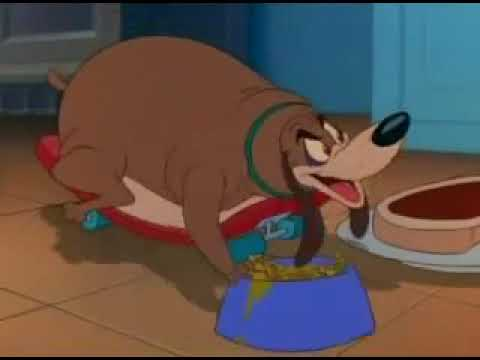 Fat Dog Tom And Jerry Youtube