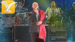 Cultura Profética - Nadie se atreve - Festival de Viña del Mar 2015 HD 1080P