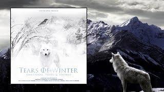 Sub Pub Music — Tears Of Winter [Full Album]