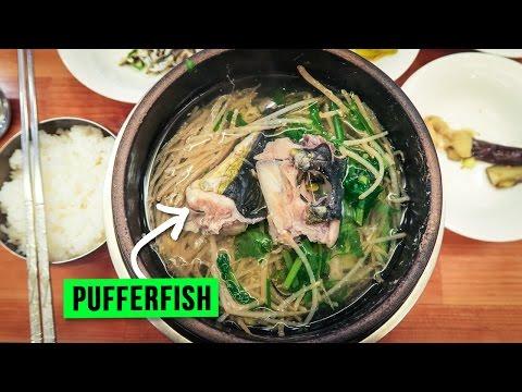 Pufferfish Soup in Busan, South Korea ♦ Flying to Jeju Island