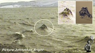 Could this be a picture of the Loch Ness Monster?