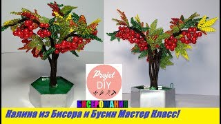Калина из Бисера Мастер Класс!Дерево из бисера Мастер Класс/Kalina from beads!A tree of beads!