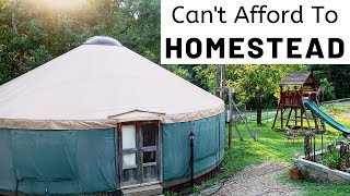 Homesteading with NO MONEY | How we MADE IT WORK