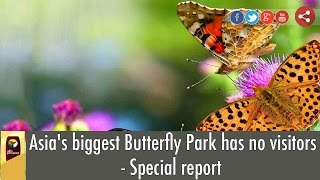 Asia's biggest Butterfly Park has no visitors - Special report