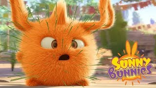 Sunny Bunnies - CACTUS BUNNIES | Cartoons For Children | Sunny Bunnies 2018 | Funny Cartoon