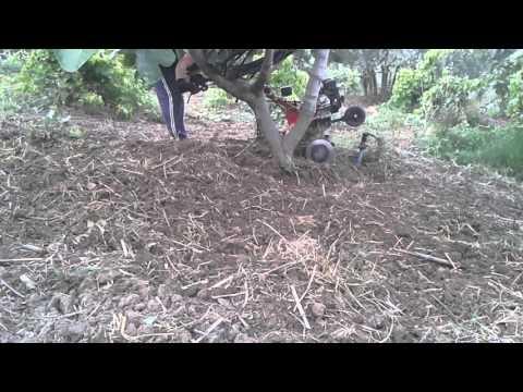 Loncin el çapa makinası ağaç dipi kazma