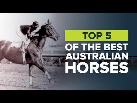 TOP 5 AUSTRALIAN RACEHORSES: WINX, BLACK CAVIAR & PHAR LAP