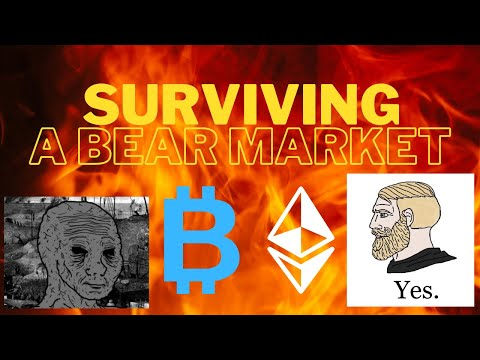 Making Money in Crypto Bull Market Is EASY – BEAR Market… Less So