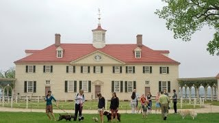 Dog Tour at Mount Vernon
