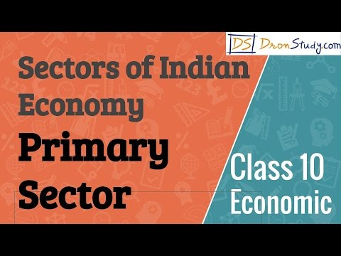 Primary Sector -  Sectors of Indian Economy : CBSE Class 10 X Economics