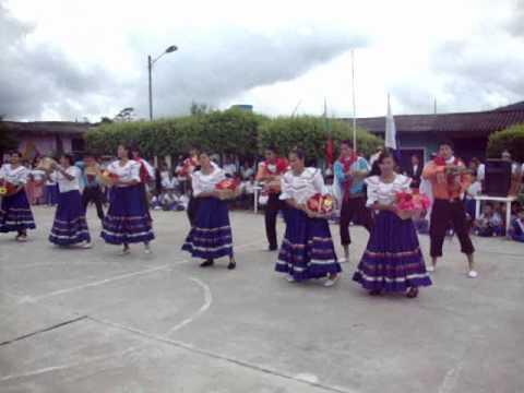BAMBUCO REGIÓN ANDINA ( San Pedro en El Espinal).wmv