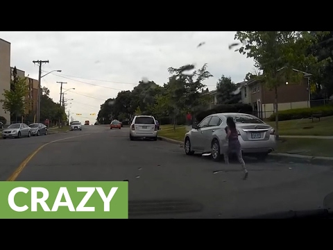 Dog gets hit by car, miraculously shakes it off