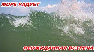 АНАПА 02.08.2020 МОРЕ РАДУЕТ. НЕОЖИДАННАЯ ВСТРЕЧА
