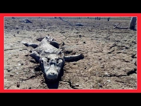END TIMES SIGNS FROM GOD 23rd July 2016
