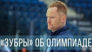 «Зубры» об Олимпиаде