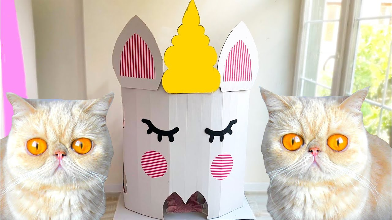 Building 2 FLOORS Amazing Kitten Cat Pet House from Cardboard  !