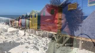 Cape Town - Jackie Almeida