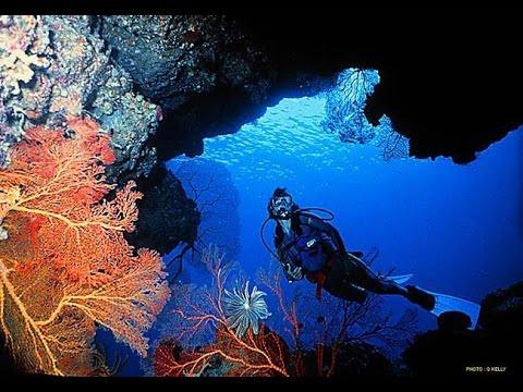 """Uepi Island Resort """"The Ultimate Escape"""""""
