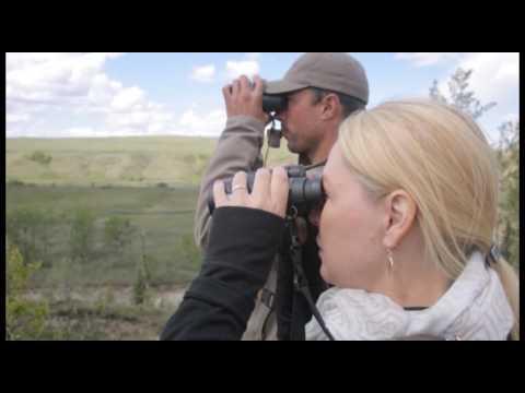 Remington Country TV Spot & Stalk Black Bear Hunt Alberta Canada