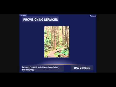 Provisioning Ecosystem Services