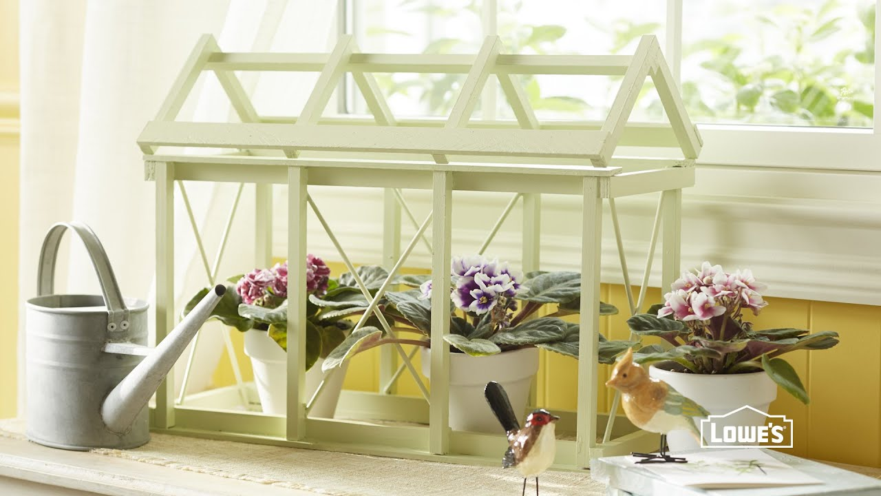 Captivating DIY Tabletop Greenhouse