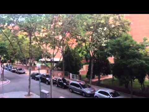 Colegio mayor sant jordi youtube - Colegio mayor sant jordi ...