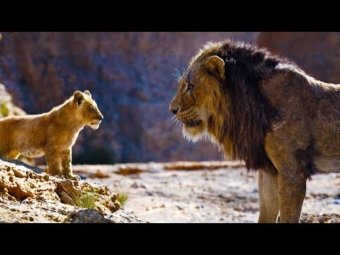 THE LION KING Scar & Simba Clip