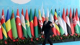 Батька в Стамбуле: зачем Эрдоган пригласил Лукашенко?