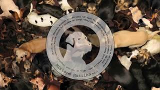 DADA YUTE | Mixtape Matilha Vol.2 | História de Um Menino