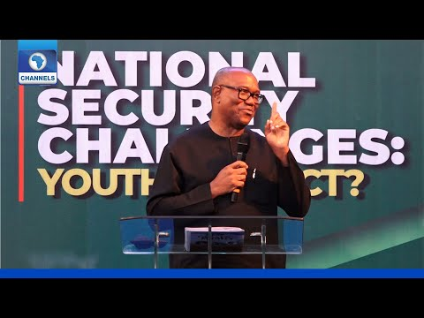 Pandora Papers: I Did Not Break Any Law - Peter Obi
