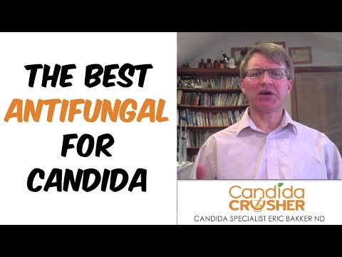 The Best Antifungal For Candida