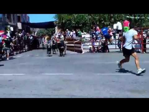 Encierros en NAVAS DEL REY . golpe del toro en la