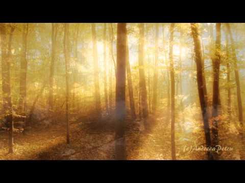 SECRET GARDEN - The Promise