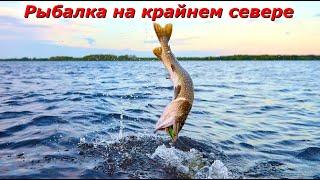 Рыбалка на щуку с большими мухами такого ещё не было