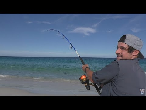 HECTIC Shark Fishing Session with Ryan Stella Fishing