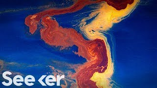 What Are We Doing to Prepare for the Next Big Oil Spill?