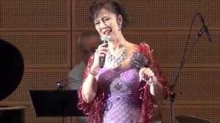 2015年7月26日(日)18時30分開演 ホテル一宮シーサイドオーツカ アルフ...